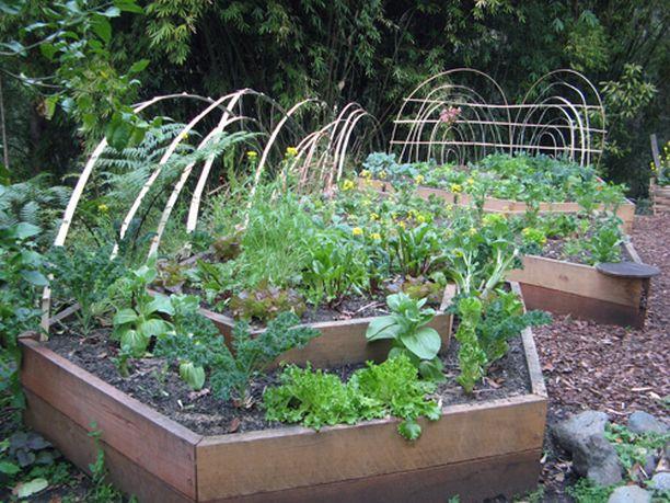 Ландшафтный дизайн сада это в