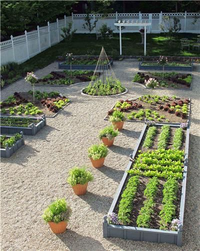 Обдумывая дизайн огорода и сада