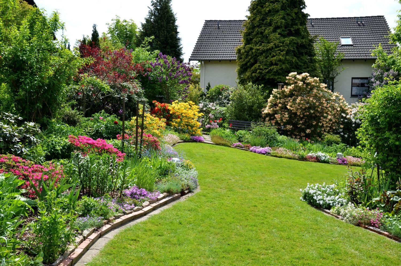Кустарники и цветы в саду фото